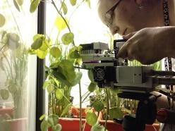 Belinda Fabian setting up LiCor to measure photosynthetic rate of wild cotton